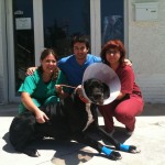 Auxiliares de prácticas: Miguel Urbano Y Mari Escudero